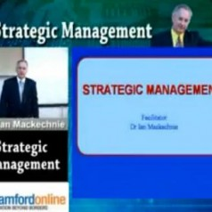 Strategic Management cz. 1